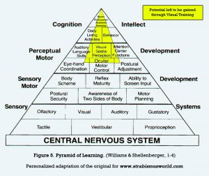 adapted pyramid of learning