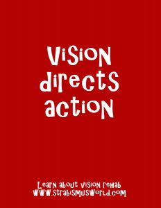 vision directs action