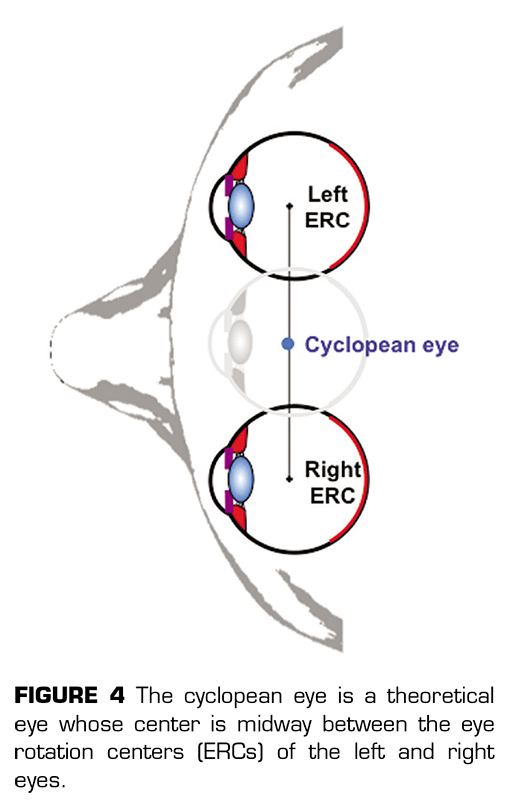 Alternation, cyclopean eye and the attentional spotlight