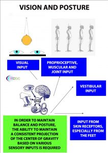 Vision and posture